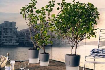 Flowerpot plantenbak met ingebouwd waterreservoir