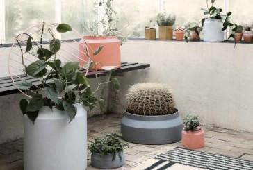 Groter groen met deze Plant Walls: da's Ferm!
