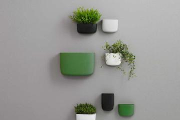 Hang je kamerplanten eens aan de muur